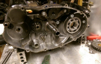 Mr250 motor
